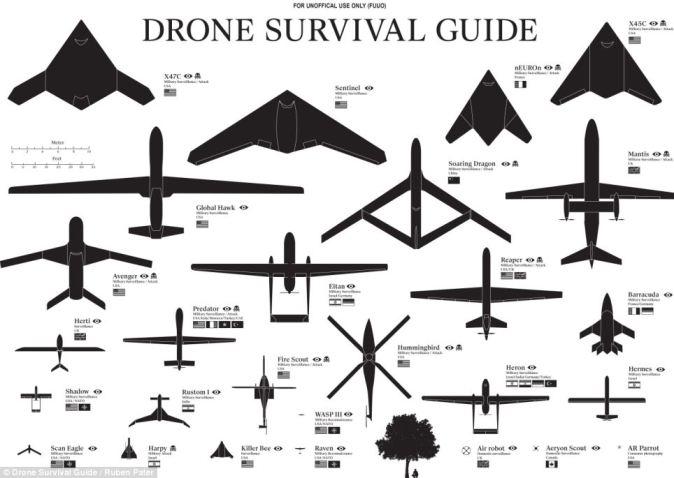 Drome Survival Guide de Ruben Pater