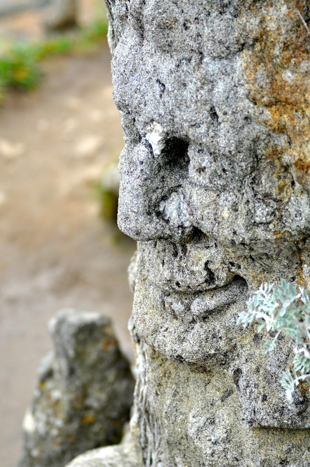rochers_sculptes_de_rotheneuf_10